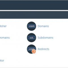 cPanel Domain Control Menu Section